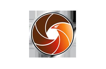 BirdsEye Icon