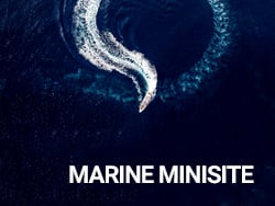 marine 2017