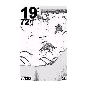 echo™ 150 7