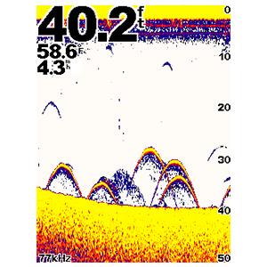 echo™300c 6