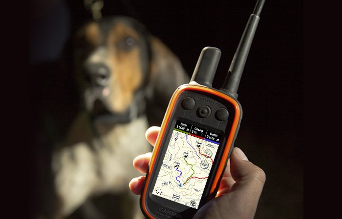 Astro DC 50 Dog Device