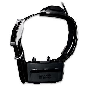 TT™ 10 Dog Device