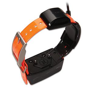 TT™ 10 Dog Device 2
