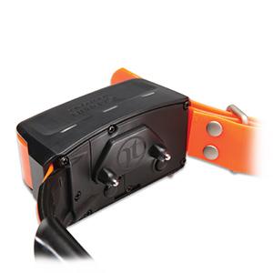 TT™ 10 Dog Device 3