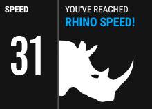 custom-rhino.jpg