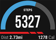 Garmin vivoactive Step it up