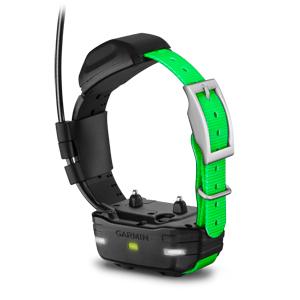 TT™ 15 Dog Device 1