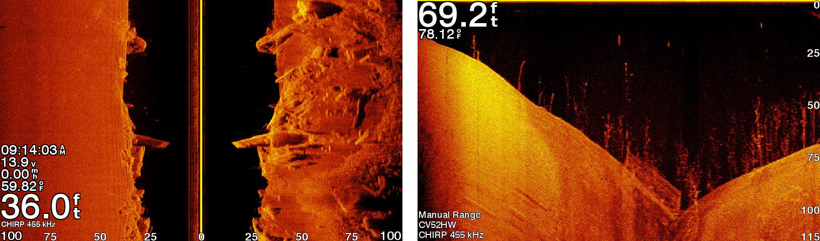 Clear Scanning Sonar Images