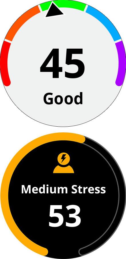 Suivi quotidien de l'activité physique et du niveau de stress