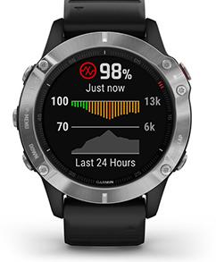 zegarek Fenix 6 010-02158-00 Garmin