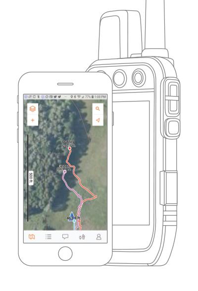 Alpha 200i handheld with tone, vibration screen