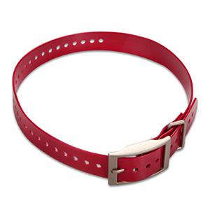 Correa del collar 1