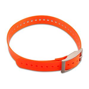 Liten 1-tums halsbandsrem – Orange