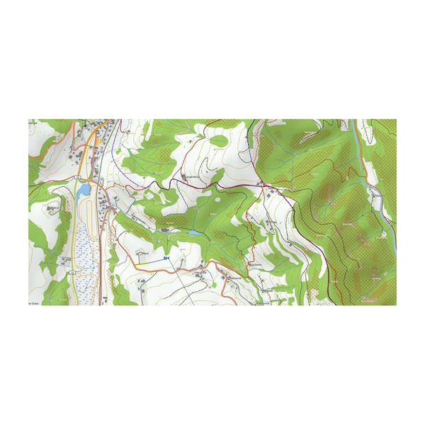 TOPO Zwitserland V2 PRO, zonder rasterkaarten 1