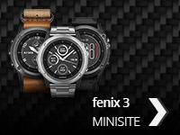 fenix 3