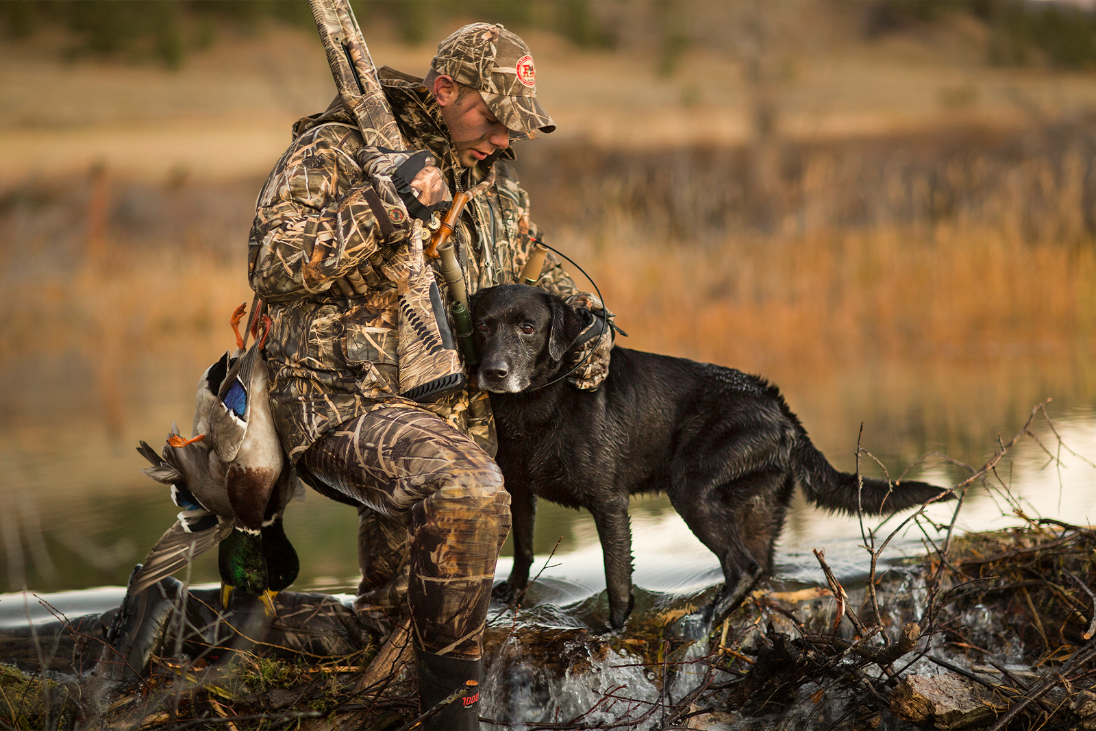 Garmin offers sporting dog solutions including dog bark collars, and dog trackers with GPS.