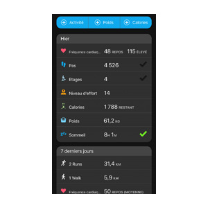 Application Garmin Connect 11